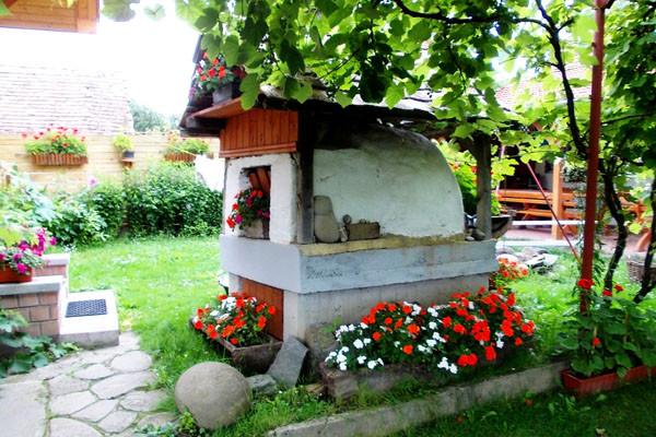 casa-arpad-cechesti